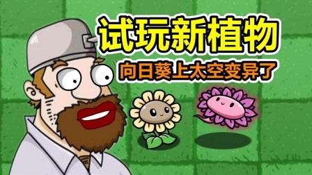 植物大战僵尸:新植物试玩,向日葵它变异了?