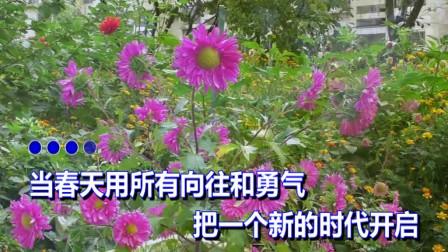 秋天 向春天致敬(伴奏)潘丽