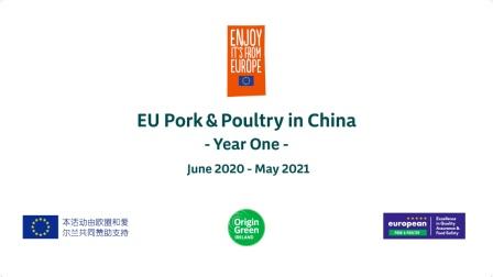 欧洲猪禽肉项目年度回顾China-2020