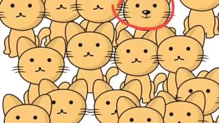 趣味小游戏:熊躲在哪啦?