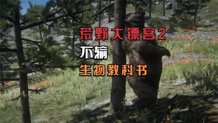 《荒野大镖客2》既可以当历史教材,也获得了生物学者的认可