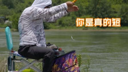 贵州巴拉河畔探急流 小鱼也能玩尽兴
