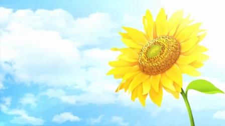 歌曲《智者行天下》浙江省金华山智者寺2021.07.19<农历六月初十>(周一)下午拍摄