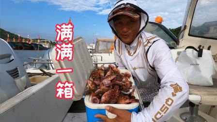 海钓虎头鱼不需要什么技术,新手也可以轻松爆箱,你心动了吗