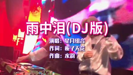 星月组合《雨中泪》DJ版节奏动感,经典对唱,唱得动人心弦