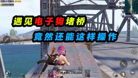 和平精英:妹子偶遇电子狗堵桥!一下子我就没了?