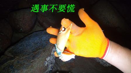 大退潮之后海边的资源特别多,阿平大战青蟹后又抓海参和石斑鱼