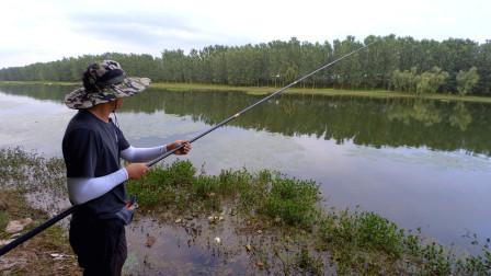 跑40多公里找到的钓点,这里鲤鱼多鲫鱼不好钓,看看渔获很骨感