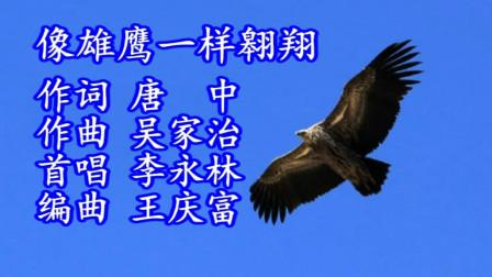 像雄鹰一样翱翔(演唱)