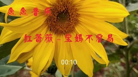 红蔷薇一曲《宝妈不容易》唱出多少宝妈的辛酸泪史,听哭了