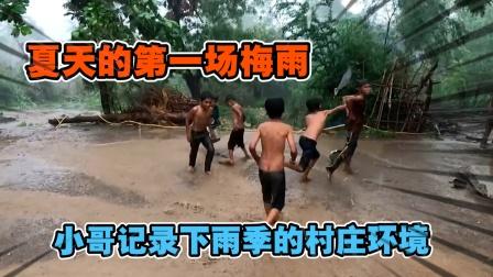 夏天的第一场梅雨!三哥记录下雨中的村庄生态!