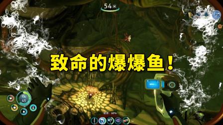 【深海迷航】第3期 你不要过来啊!爆爆鱼!