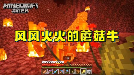 我的世界314:蘑菇牛变成火牛!该死的恶魂,三番两次烧我的牛!