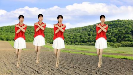 广场舞,优美流行《歌声与微笑》简单经典