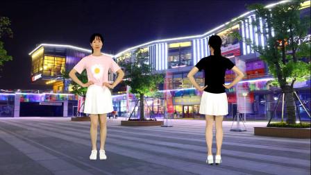 霸屏广场舞,正反面32步《广场舞大妈》优美流行