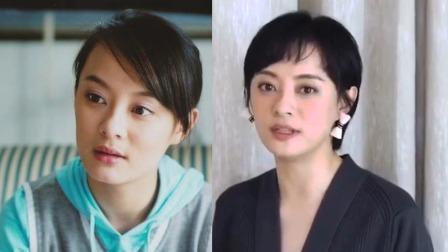 被导演看中的女星今昔,张柏芝一美就是十年,谁的变化最大?