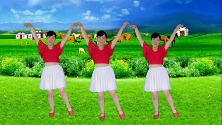 郴州冬菊广场舞【最美的草原最美的花】好听好看的柔美32步附分解