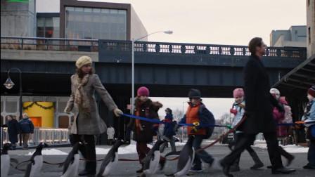 男人养6只企鹅当宠物,别人遛猫遛狗,他上街却是溜企鹅