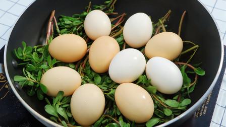 马齿苋和鸡蛋这样做真好吃,做法简单,营养美味又解馋,真香