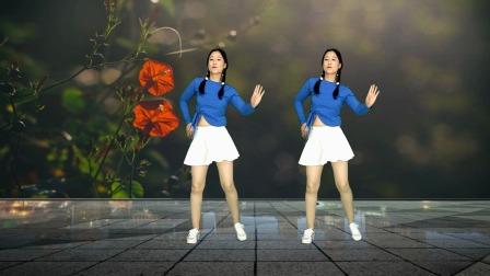 海来阿木热门歌舞《人生如歌》64步时尚版