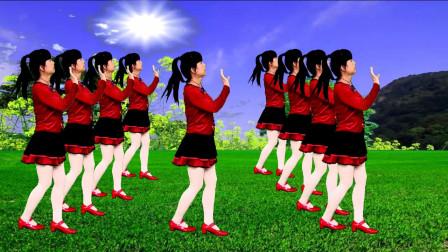 DJ广场舞《农民的苦》歌醉舞美,好听好看又好学