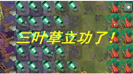 【晓义哥】PVZ2国际版竞技场(7.27-7.29):三叶草立功了!