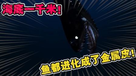 动物世界:连太阳都照射不到的深海一千米下,居住着怎样的鱼类?