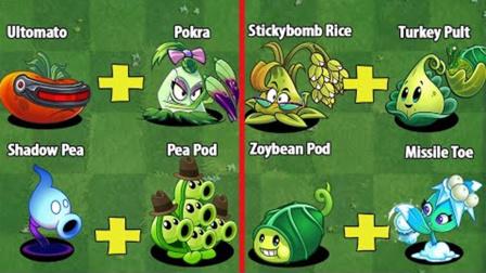 植物大战僵尸2:随机两种植物做组合,谁能获胜?