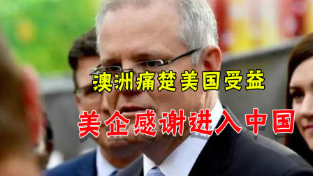 中澳贸易关系恶化,美国企业乐开花:能进入中国市场多亏莫里森