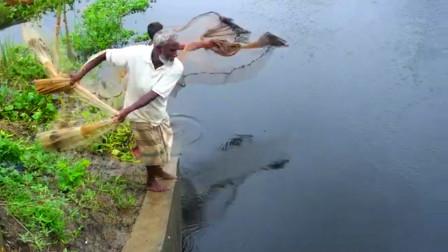 80岁大爷靠撒网捕鱼为生,一网下去,看看他捕获了多少?