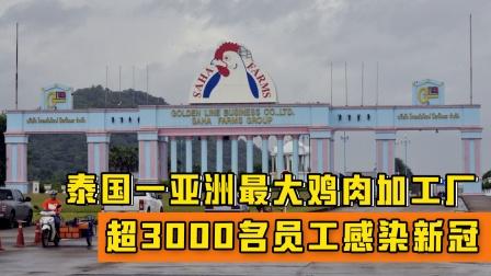 泰国一亚洲最大鸡肉加工厂超3000名员工感染新冠:感染率近50%