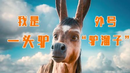 男人意外获得神奇小驴,经历各种冒险,最终抱得美人归