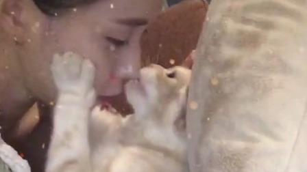小猫咪比我都会 放开那个女孩