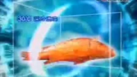 新闻联播开始前/结束后广告(片尾曲晚放/天气预报片段)2003.4.24