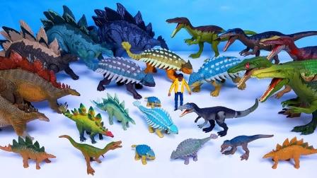 展示甲龙、重爪龙和剑龙玩具
