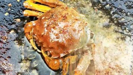 金黄的烤螃蟹太美味了