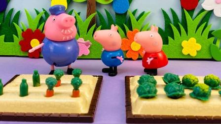 佩奇和乔治来到猪爷爷的菜园