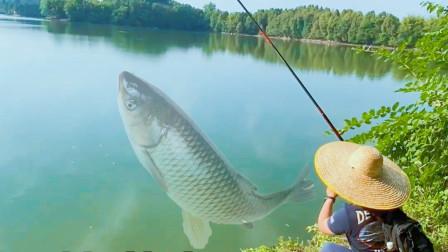 钓草鱼子线多长算长?