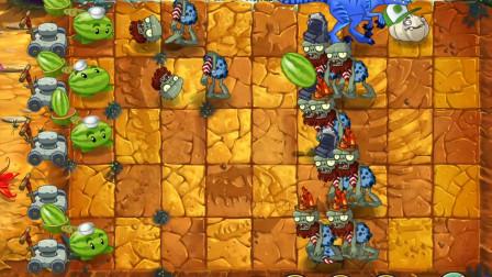 植物大战僵尸2国际版:一阶闯侏罗纪3-4天,爆裂葡萄真厉害!