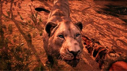 孤岛惊魂原始杀戮:困难版第11期 驯服一只狮子看谁还敢欺负我