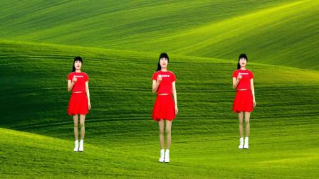 最新DJ广场舞《情字有多假》时尚动感, 舞步好看, 简单易学!