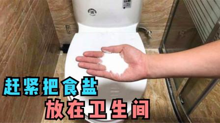 卫生间里放把食盐,真太厉害了,用途实用又省钱,看完回家试一试