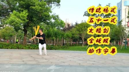 佛系传统杨式五十一式太极剑全视频动作字幕步步清风教学版