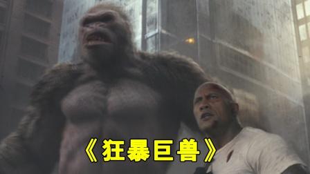 白猿服下解药,恢复了神志,跟随强哥进行最后的决战!