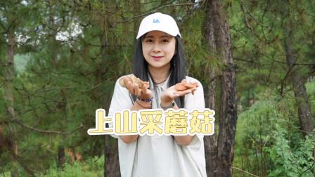 大姐上山捡菌子,不知道是不是捡到了毒菌子,有人认识吗?