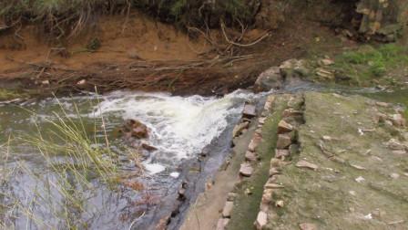 找到一条不起眼的小河,却发现有很多鱼在跳