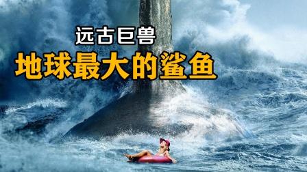 史前巨兽,地球上最大的鲨鱼,这才是真正的海洋霸主!