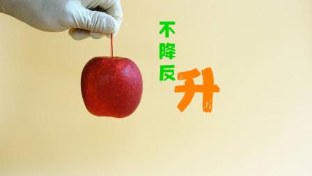 魔力科学小实验,牛顿只说了苹果会往下掉,可没说会往上升啊