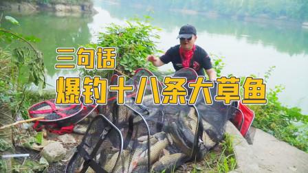 三句话,微微一笑爆钓18条大草鱼