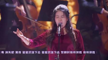 达人秀:理发大姐一嗓子震全场,歌剧唱的真够味,秒杀专业的!